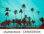 beautiful silhouette coconut...   Shutterstock . vector #1356525434