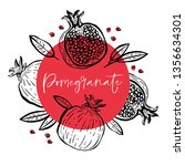 Hand Drawn Pomegranate...
