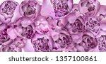 purple peony flowers card... | Shutterstock .eps vector #1357100861