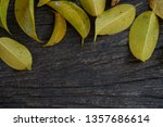 dry leaves surround the empty... | Shutterstock . vector #1357686614