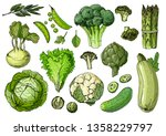 green vegetarian food. broccoli ... | Shutterstock .eps vector #1358229797