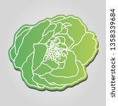 garden rose hand drawn... | Shutterstock .eps vector #1358339684