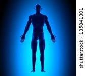 full body   back view blue... | Shutterstock . vector #135841301