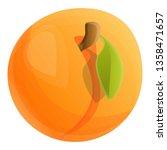 whole eco apricot icon. cartoon ... | Shutterstock .eps vector #1358471657