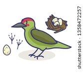 cute woodpecker nest cartoon... | Shutterstock .eps vector #1358472257
