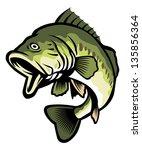 freshwater fish | Shutterstock .eps vector #135856364