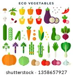 eco vegetables  colorful flat... | Shutterstock .eps vector #1358657927