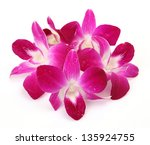 pink flowers | Shutterstock . vector #135924755