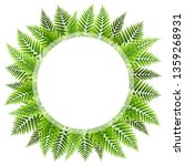 green fern leaves round frame... | Shutterstock .eps vector #1359268931