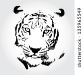 tiger sketch isolated... | Shutterstock . vector #135965549