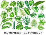Tropical Leaves And Flowers On...