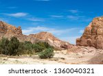 desert oasis in the middle of... | Shutterstock . vector #1360040321