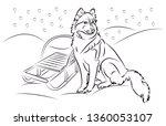 husky dog in snow   Shutterstock .eps vector #1360053107