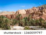 oasis with palm trees in the... | Shutterstock . vector #1360059797