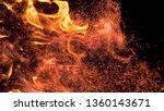 macro  dof  vertical ... | Shutterstock . vector #1360143671