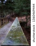 Small photo of North Chagrin Reservation bridge in rain
