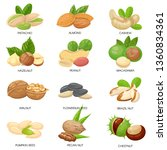 nuts and seeds. raw peanut ... | Shutterstock . vector #1360834361