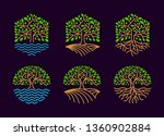 Set Tree Logo Is Hexagonal And...