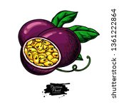 passion fruit vector drawing.... | Shutterstock .eps vector #1361222864