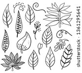vector botanical hand drawn... | Shutterstock .eps vector #1361295641