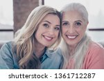 close up photo two amazing she...   Shutterstock . vector #1361712287