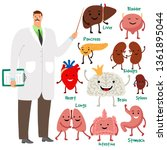cute doctor and human internal... | Shutterstock .eps vector #1361895044