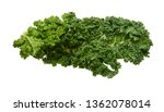 kale leafs on white background  | Shutterstock . vector #1362078014