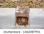 Rusted Metal Water Drain In...