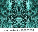 Colorful Snake Skin  Background