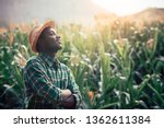Small photo of African Farmer with hat stand in the corn plantation field