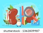 doctor make kidney examination. ... | Shutterstock .eps vector #1362839987
