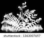 ilustration with fern bush... | Shutterstock .eps vector #1363007657