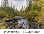 scenic view of the river in the ...   Shutterstock . vector #1363042004