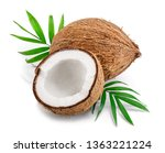 coconut with leaves isolated on ... | Shutterstock . vector #1363221224