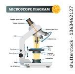 microscope diagram vector... | Shutterstock .eps vector #1363462127
