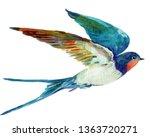 Stock photo bird swallow watercolor illustration 1363720271