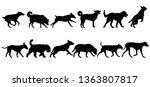 set silhouette dog on a white... | Shutterstock . vector #1363807817