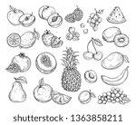 sketch fruits. strawberry melon ...   Shutterstock .eps vector #1363858211