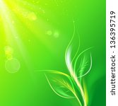 green leaves  bright sun. ... | Shutterstock . vector #136395719
