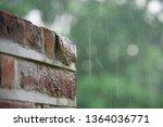 Rain  Rain Water Saturating A...