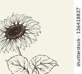 Illustration Of Sunflower. ...