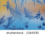 ice crystals on window | Shutterstock . vector #1364530