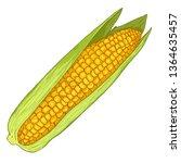 vector cartoon yellow corn cob...   Shutterstock .eps vector #1364635457