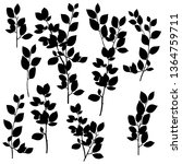 vector silhouettes drawing... | Shutterstock .eps vector #1364759711