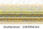 green grunge digital abstract...   Shutterstock . vector #1365006161