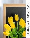 a bouquet of yellow tulips on a ... | Shutterstock . vector #1365014561