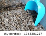 snack scene of sun flower seed... | Shutterstock . vector #1365301217