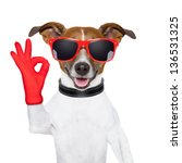 ok fingers dog with red gloves... | Shutterstock . vector #136531325