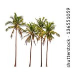 Four Coconut Palm Trees...