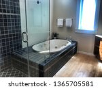 Small photo of Tiburon, California/USA - April 10, 2019: snazzy bathroom interior with modern touches and upgrades